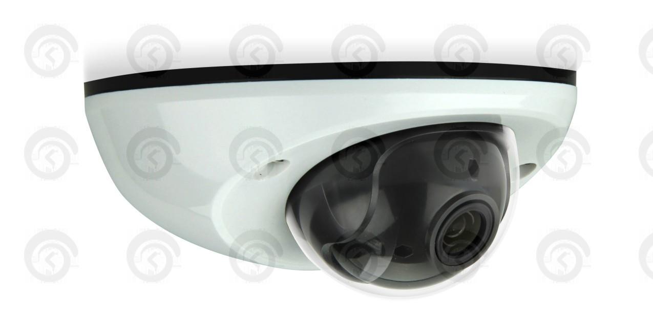 IP видеокамера Купольная цветная антивандал 2 Мп (HD) AVTech AVM-511